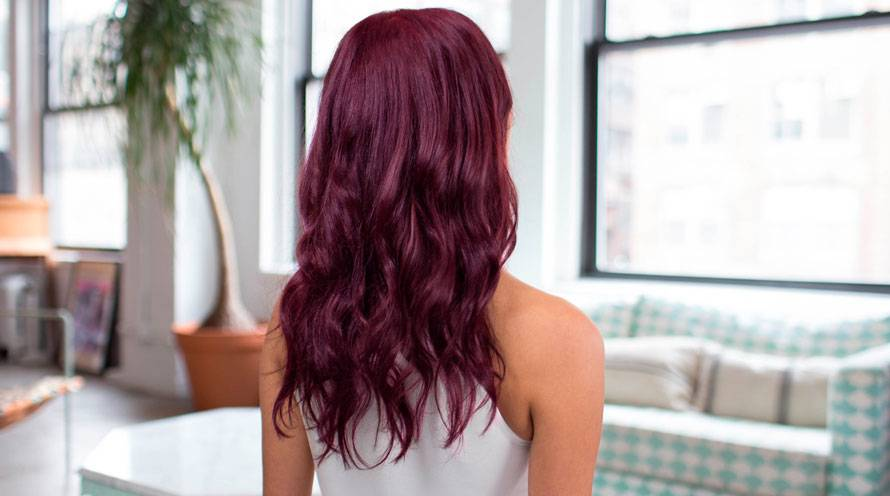 Garnier Hair Color Example Long Purple Hair