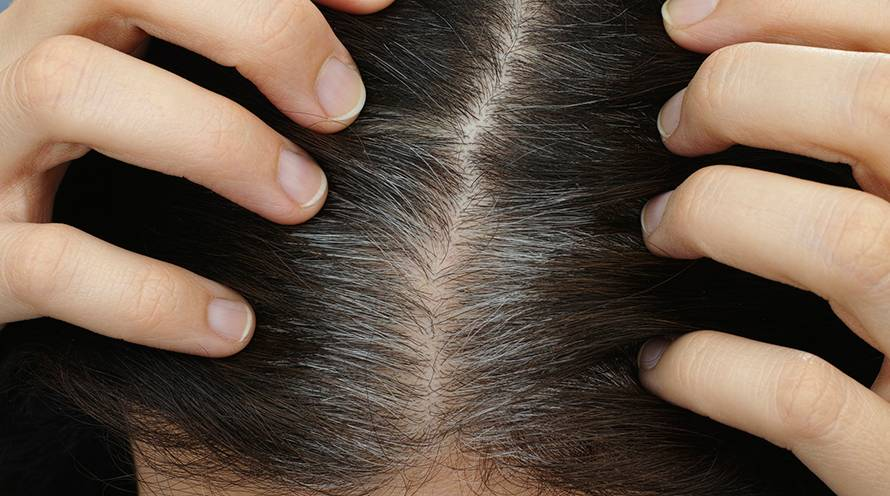 How To Cover & Care for Gray Hair - Hair Care Tips - Garnier