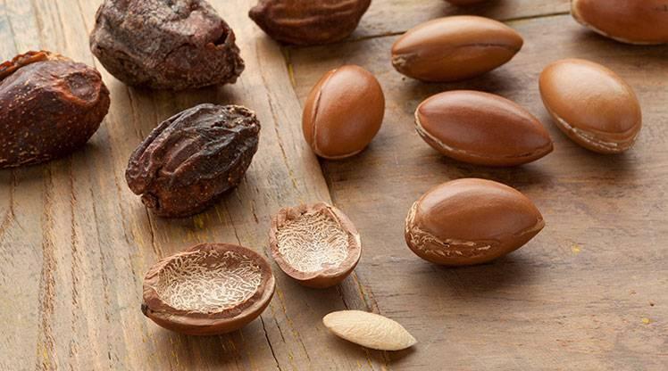 What Is An Argan Nut Skin Care Garnier
