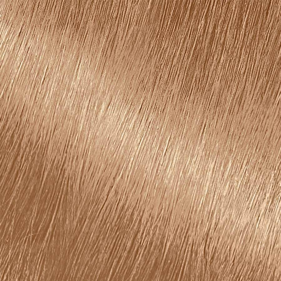 Garnier Nutrisse Nourishing Color Creme 82 - Champagne Blonde (Champagne Fizz) Permanent Hair Color