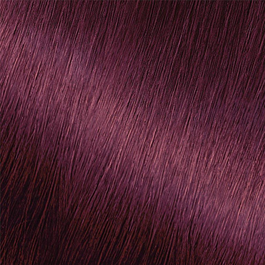 Garnier Nutrisse Nourishing Color Creme 362 - Darkest Berry Burgundy Permanent Hair Color Swatch