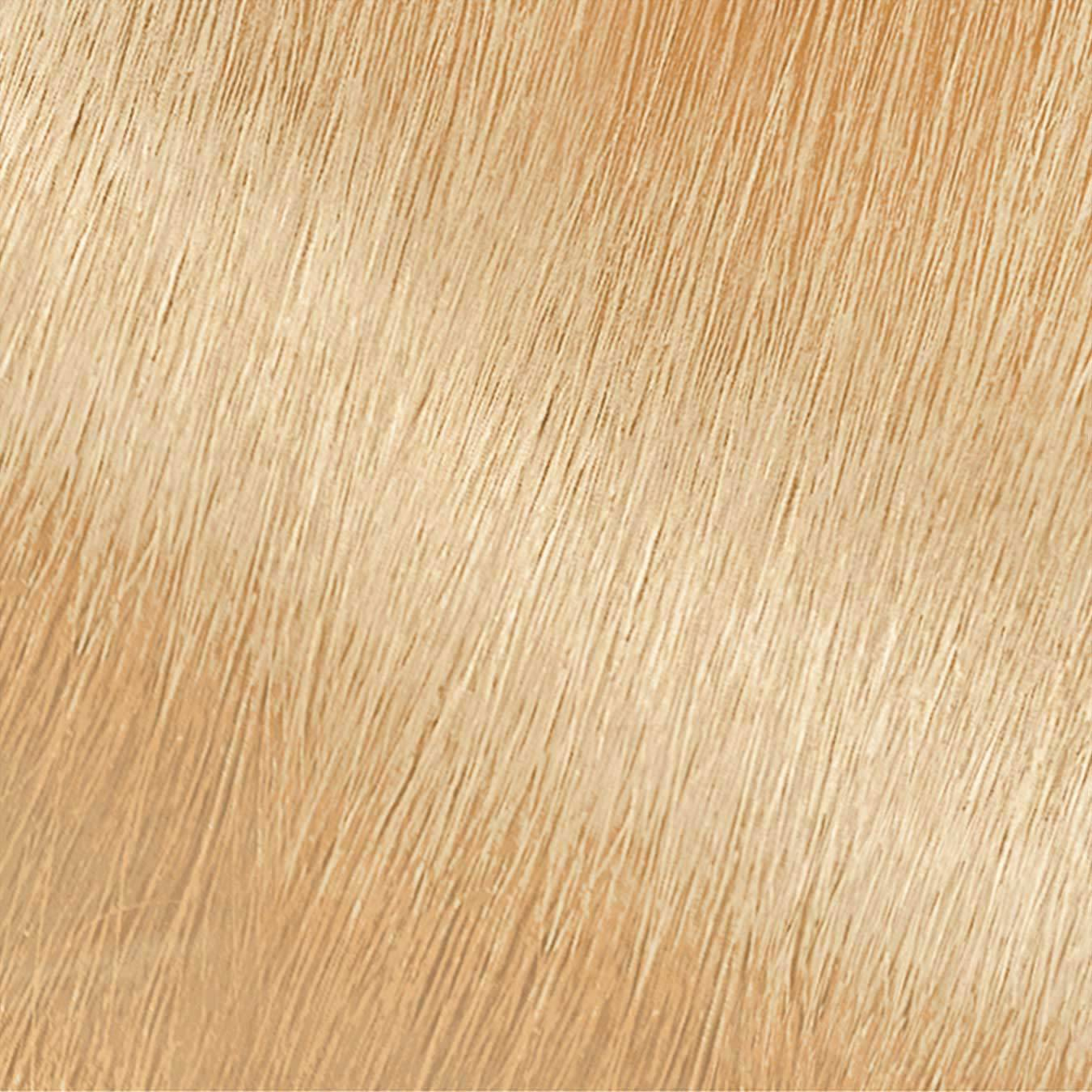 Garnier Nutrisse Nourishing Color Creme 101 - Extra Light Buttery Blonde Permanent Hair Color Swatch