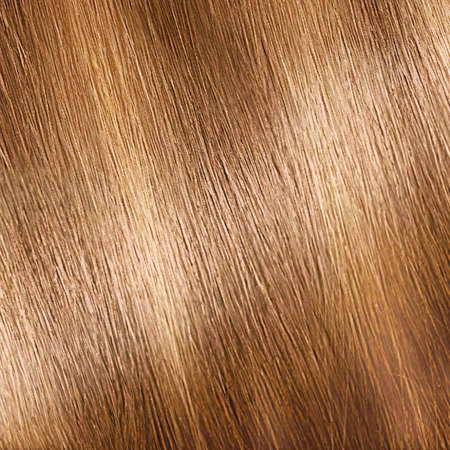 Garnier Nutrisse Color Creme H2 - Golden Blonde (Multi-Lights Highlighting Kit) Permanent Hair Color