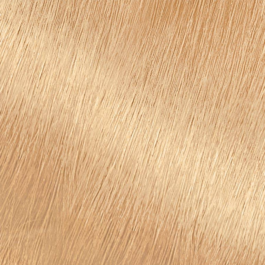 Garnier Hair Color Nutrisse Swatch Lightest Platinum Blonde Swatch PL1