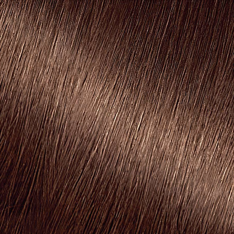 Garnier Nutrisse Ultra Coverage Spiced Hazelnut Swatch 600