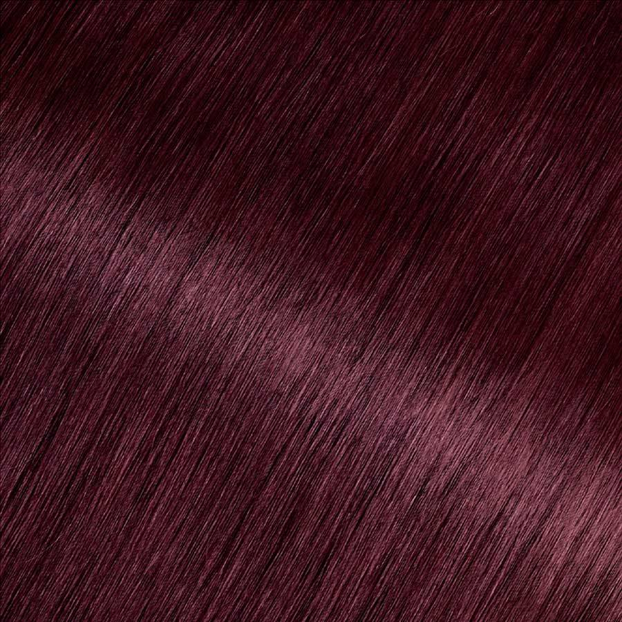Garnier Olia 4.62 - Dark Garnet Red - Powered Permanent Hair Color