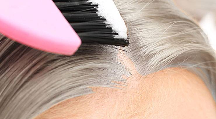 Gray Coverage Hair Color Products & Tips - Garnier